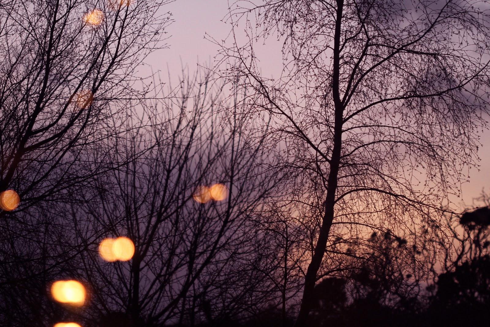 December dusk from my window