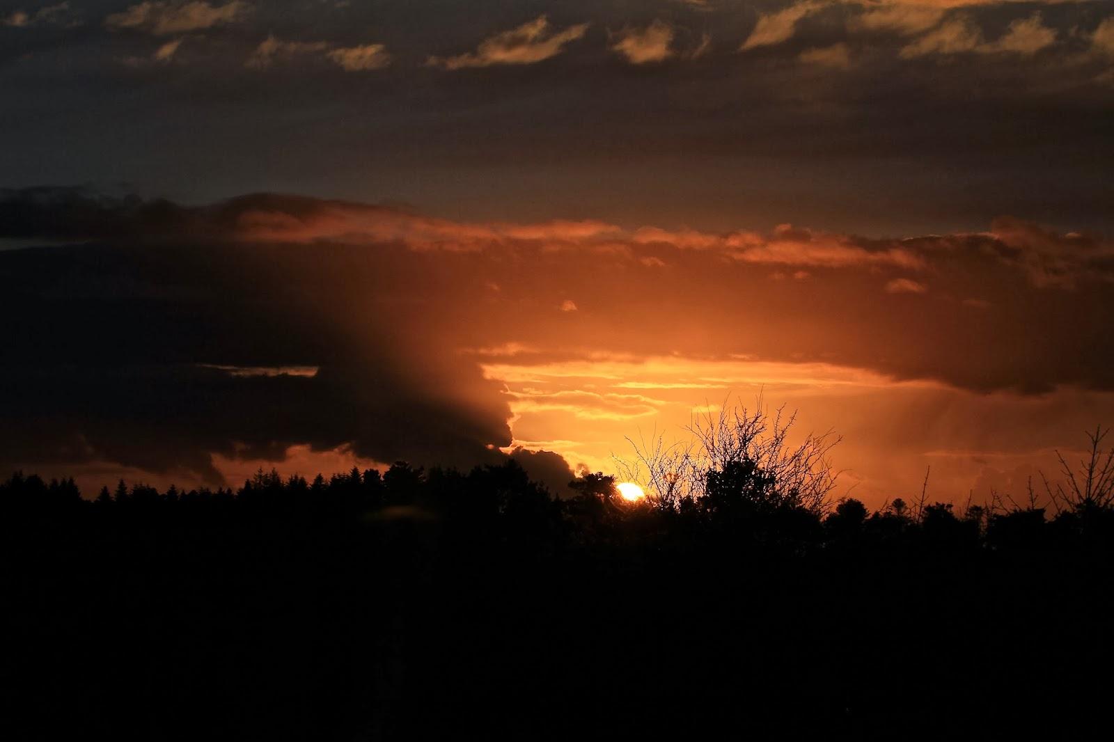Still drawn to the evening sky