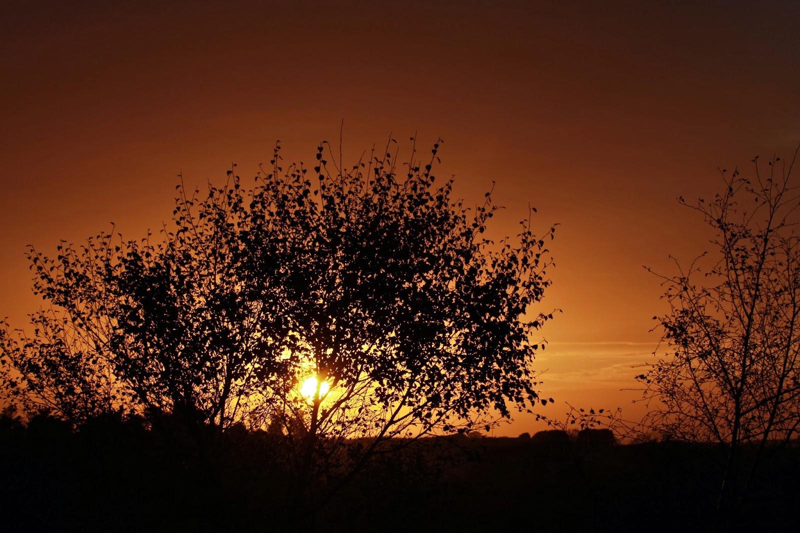 An introvert at dusk