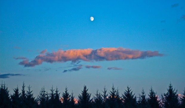 I give them the moon and a white ribbon…….