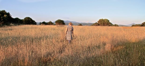 catherine-drea-large-in-field