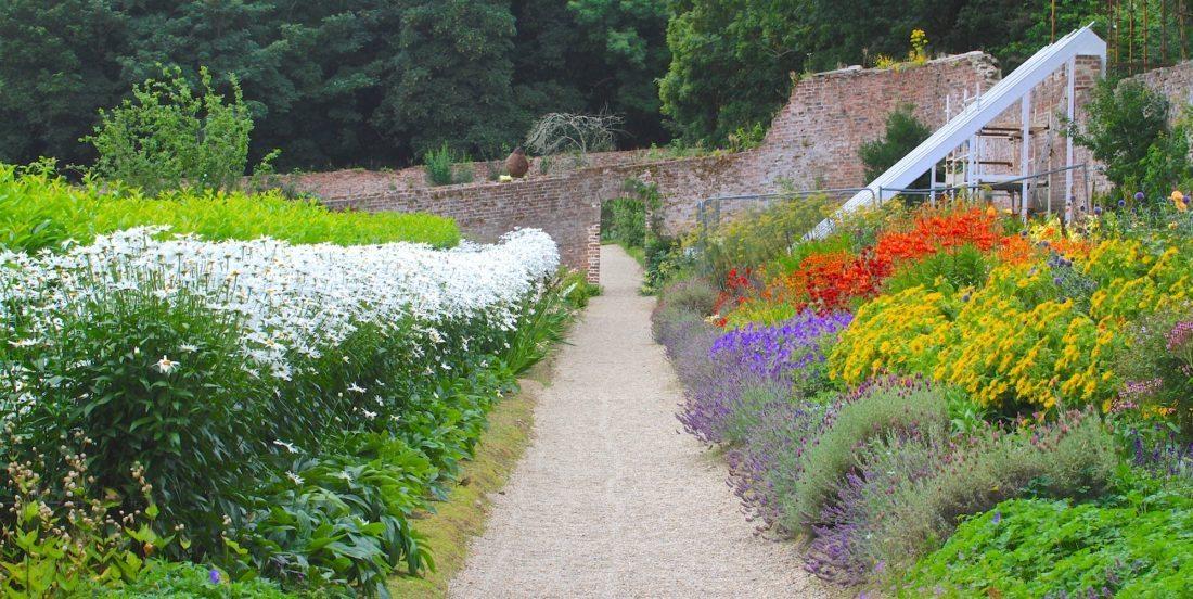 Full on summer in the garden