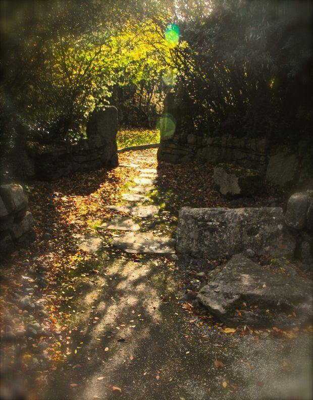 churchyard-light