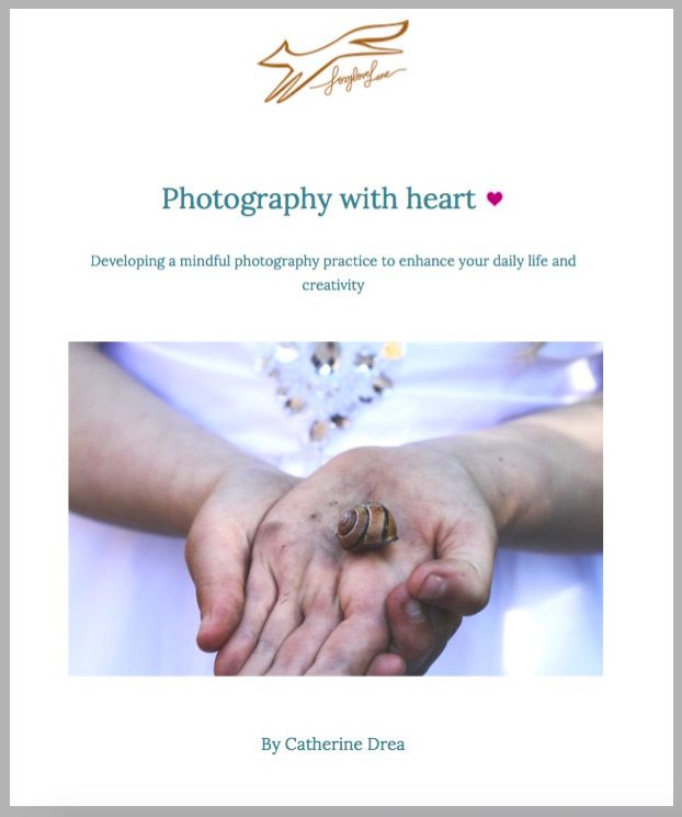 Cover of Photography with heart